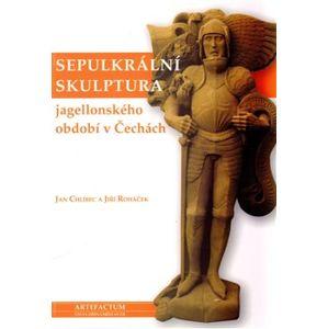Sepulkrální skulptura jagellonského období v Čechách. Figura a písmo - Jiří Roháček, Jan Chlíbec
