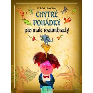 Chytré pohádky pro malé rozumbrady - Jiří Žáček