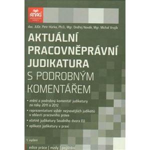Aktuální pracovněprávní judikatura s podrobným komentářem - Michal Vrajík, Ondřej Novák, Petr Hůrka