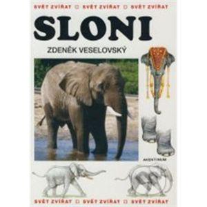 Sloni - Zdeněk Veselovský