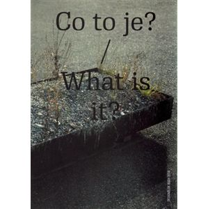 Co to je? / What is it. Designblok Book 2016