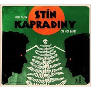 Stín kapradiny - Josef Čapek