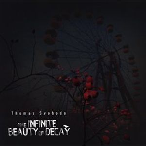 The Infinite Beauty of Decay - Thomas Svoboda