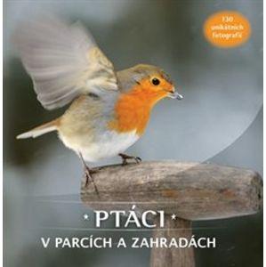 Ptáci v parcích a zahradách. 130 unikátních fotografií - kol.