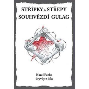 Střípky a střepy Souhvězdí Gulag - Karel Pecka