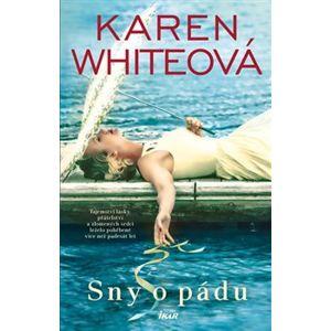 Sny o pádu - Karen Whiteová