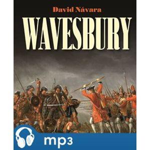 Wavesbury - David Návara