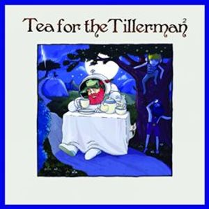 Tea For The Tillerman 2 - Cat Stevens