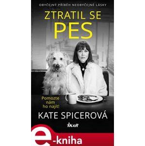 Ztratil se pes - Kate Spicerová