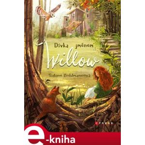 Dívka jménem Willow - Sabine Bohlmannová